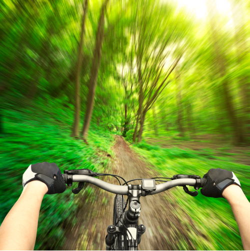 Use the benefits of visualization to navigate your path through life.  A bike ride through a forest symbolizes navigating a path.