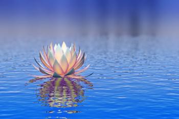 White lotus flower on blue water representing the gentleness of Karuna Reiki benefits.
