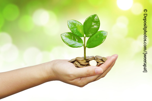 Use money affirmations to plant the seeds of your prosperity.