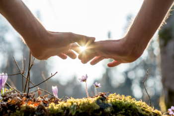 Sekhem Seichem Reiki encourages the person to grow spiritually, mentally, emotionally as symbolized by the hands hovering over the growing flowers and plants.