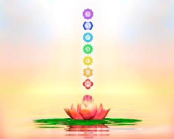 Chakra symbols above a lotus flower.  Chakras are often re-balanced during proper vibrational energy healing.