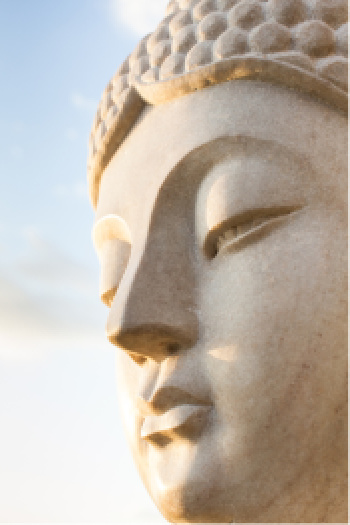 Visualization tips include allowing yourself to visualize the most pure form of what you intend to create.  The Buddha, here represents that purity in thought.